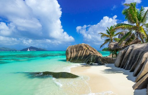beach in the seychelles with granite boulders and palm trees and clear blue seas