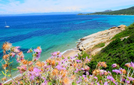 Porquerolles beach view