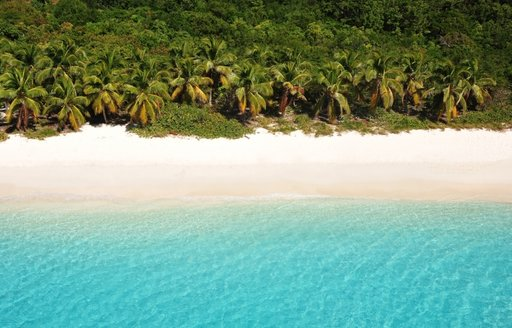 A pristine BVI beach on the island of Tortola