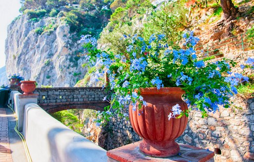 The culture of Capri: the must-see attractions on a private yacht charter photo 11