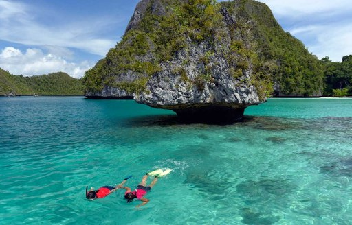snorkelling on a yacht charter in the raja ampat islands