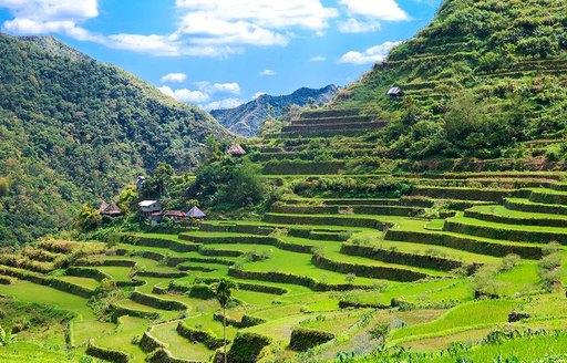 Philippines fields