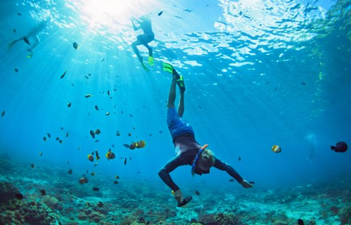 Man in snorkeling mask with camera dive underwater with tropical fishes in coral reef sea pool in Caribbean