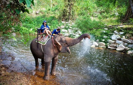 A visitor to Khao Yai National Park riding an elephant