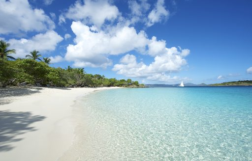 Paradise Caribbean Beach at St John, US Virgin Islands. Clear water, fringed with white sandy beach and blue sky