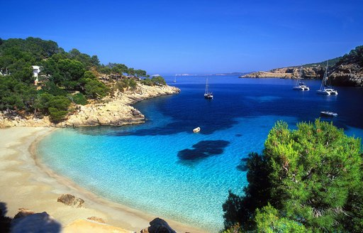 beautiful beach Cala Salada in Ibiza