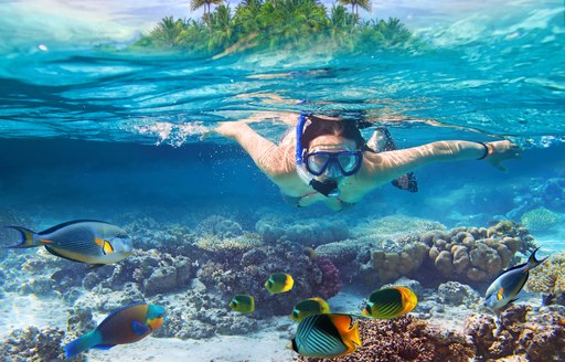 Woman snorkels in clear water of British Virgin Islands with island above surface of the sea