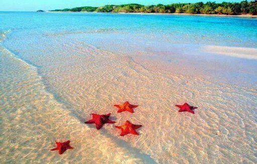 Great Abacos beach