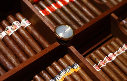 A selection of fine Cuban cigars