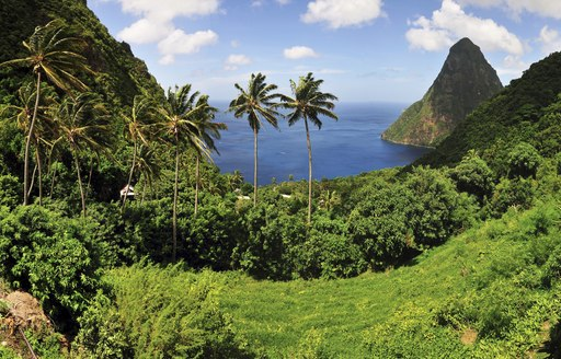 yacht charter destination of st lucia with palm trees and pitons