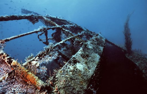 One of the best shallow shipwrecks in the Caribbean, the River Taw in St. Kitts