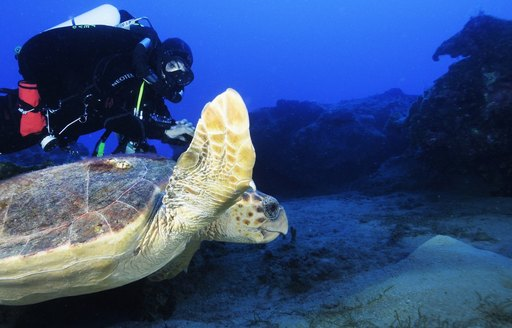 Where to scuba dive on your luxury yacht charter vacation in Turkey photo 6
