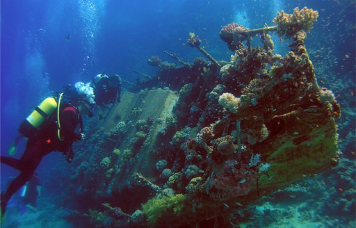 diving at Shipwreck in St Kitts