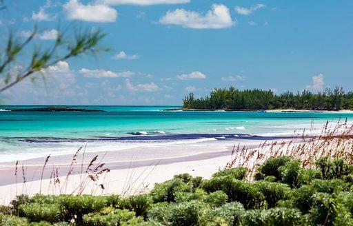 French leave eleuthera resort bahamas beach