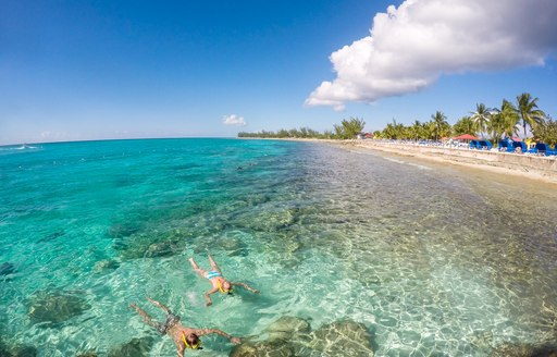 people float in clear water near beach in the bahamas, with palm trees on the shore and sandy beach in background