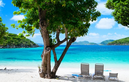 Three chairs on beach next to tree, looking towards clear seas and blue skies
