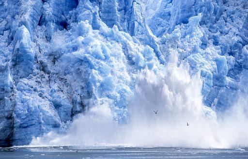 ice chips off large glacier in alaska