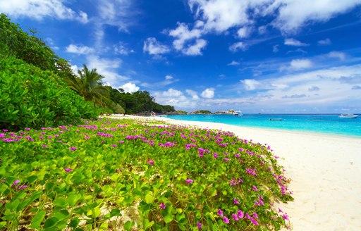 Stunning beach on Similan Islands
