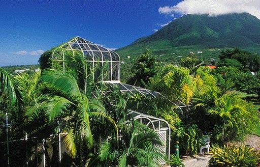 volcano and rainforest in st kitts, Caribbean
