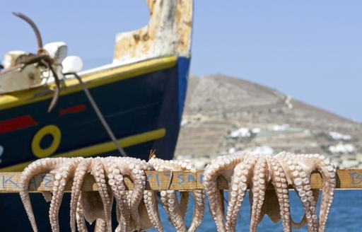 A Greek Captain can find the best seafood available in the area