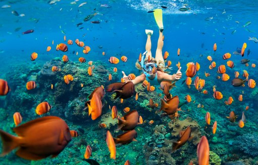 Girl in snorkeling mask dive underwater with tropical fishes in coral reef sea pool