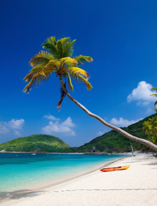 palm tree hangs over white sand of Deadman's Bay on Peter Island in the British Virgin Islands