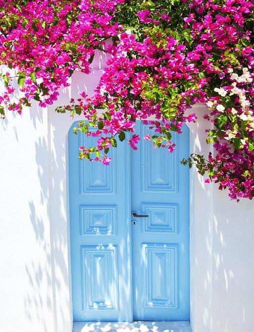Door in Santorini with bougainvillea