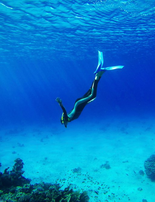 a scuba diver discover the rich marine life of Komodo waters