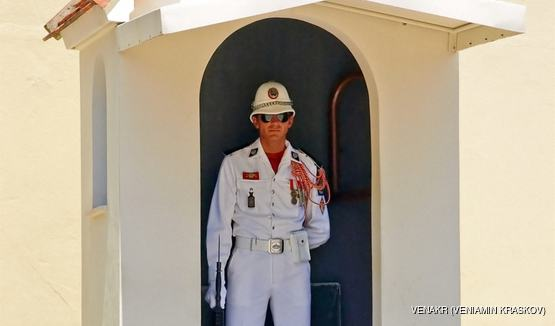 See the Royal Guards of the Prince's Palace