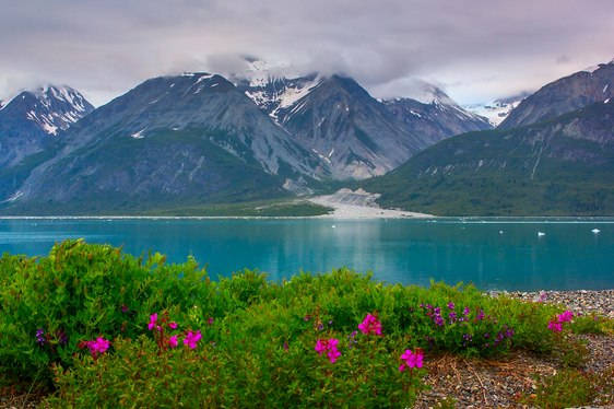 Alternative Summer Yacht Charters in Alaska