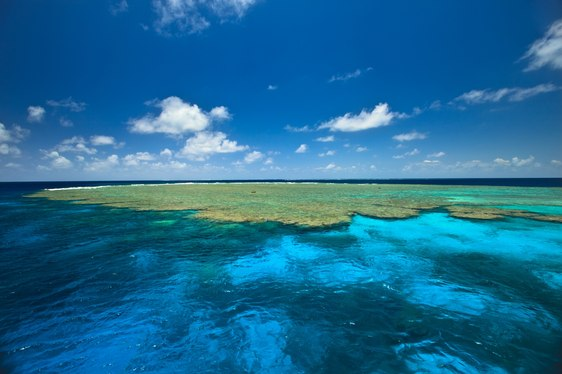 Great Barrier Reef Destination Guide