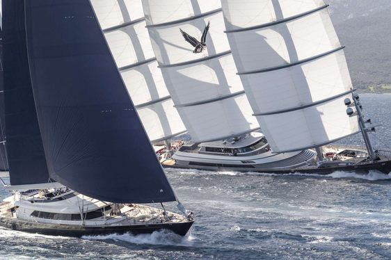superyacht Maltese Falcon in action during the Perini Navi Cup 2018 in Porto Cervo, Sardinia