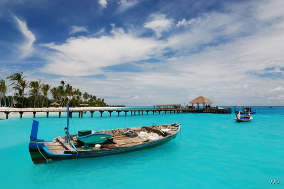 See the Fishing Boats of the Maldives