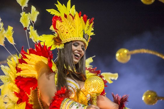 Experience the Exhilaration of the Rio Carnival