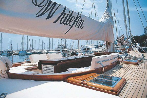 Whitefin