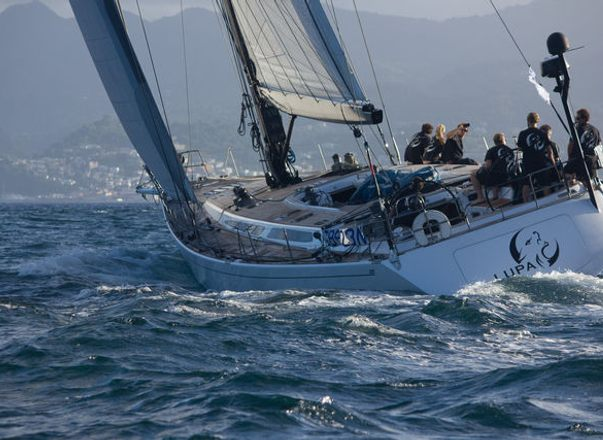 Charter Yacht 'Lupa of London' takes Line Honours at RORC Transatlantic Race 2014