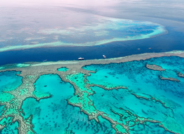 Charter yacht BELUGA set to aid scientific study into Great Barrier Reef