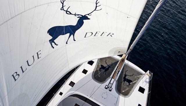 Blue Deer Charter Yacht - 7