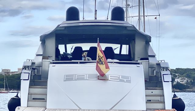 Halley Charter Yacht - 5
