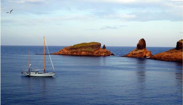 Alondra Charter Yacht - 8