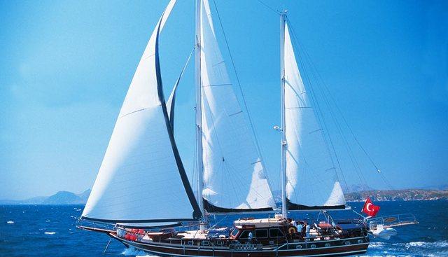Cobra Junior Charter Yacht