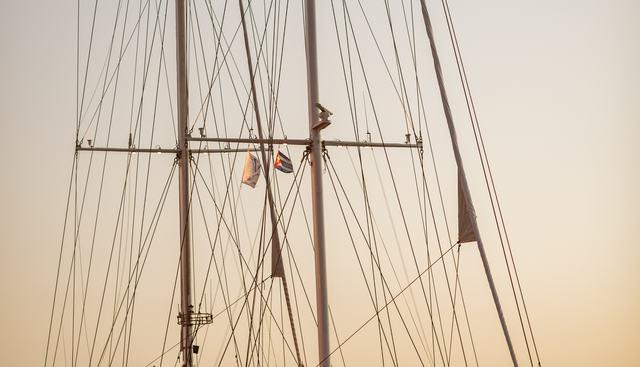 Pan Orama II Charter Yacht - 7