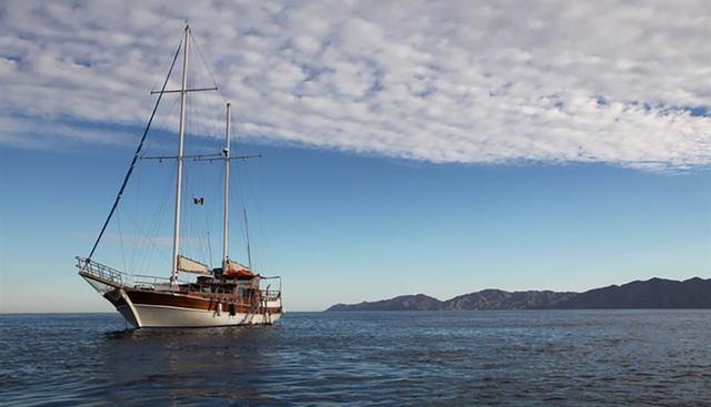 Tu Enamorado Charter Yacht - 2