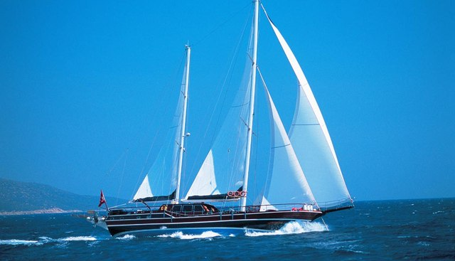 Cobra Junior Charter Yacht - 2