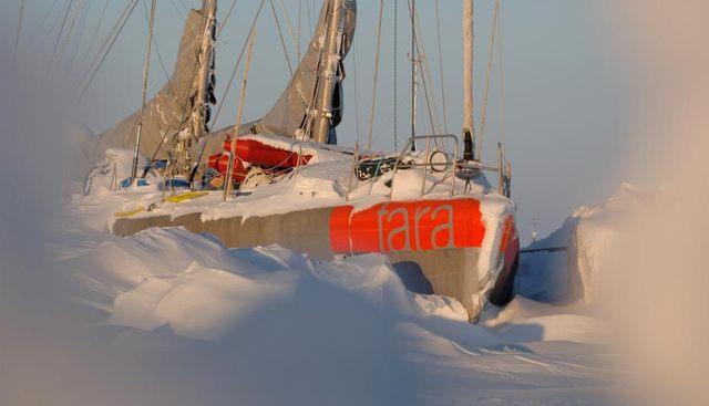 Tara Charter Yacht - 2