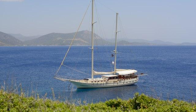 Cobra III Charter Yacht - 5