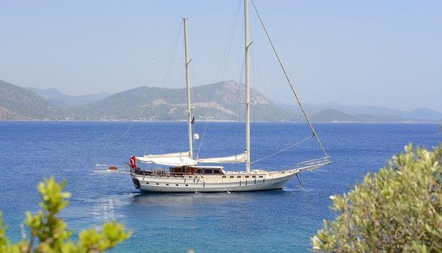Cobra III Charter Yacht