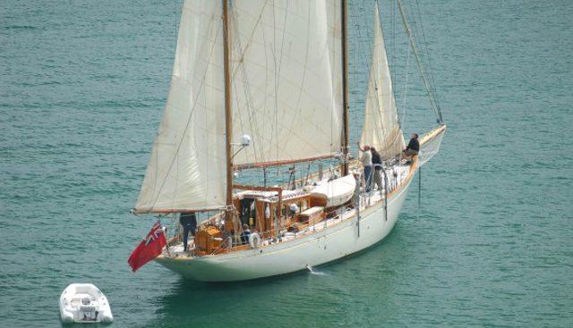 Halcyon Charter Yacht - 5