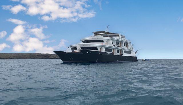 Petrel Charter Yacht - 5