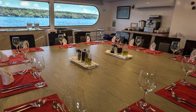 Petrel Charter Yacht - 8